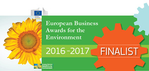 European Business Awards for the Enviroment 2016-2017